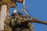 EagleNestRckprtStPrk2_071317.jpg