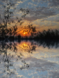 reflection on water.
