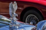 Custom - Eagle