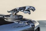 51 Jaguar