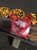 Lawrence Farms Orchards - IMG_0147.JPG