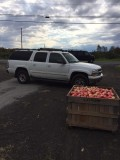 Prospect Hill Orchards - IMG_5169.JPG