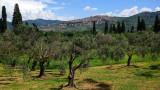 Vistas Di Roma