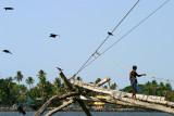 Cochin IMG_7534.jpg