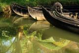 Backwaters IMG_8408.jpg