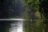Backwaters IMG_8546.jpg