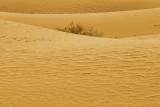 SandDunes0215