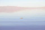 The Mystical Salton Sea