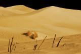 SandDunes0241