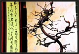 Elements of Chinese style - 2.