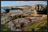 Rocks Exhibition.