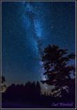 Lone Pine & Milky way