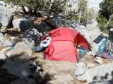 Sam Mack Meadow camp (11,000ft; 3350m)