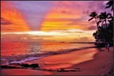 The Oahu Island of Hawaii 5