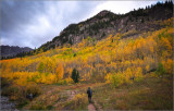 Colorado 2018 fall colors 3