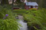 The Red Cottage, Pärrinkoski