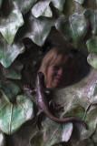 Making friends with Gaudi's salamander