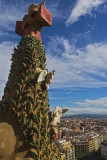 View from the Nativity Tower, Sagrada Familia