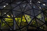 Seattle's Giant Terrarium