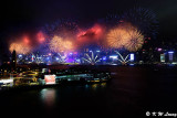 Firework DSC_7039