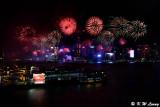 Firework DSC_7060
