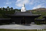 Tsz Shan Monastery (慈山寺)