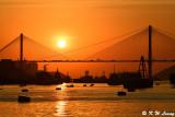 Sunset @ Ting Kau Bridge DSC_5679