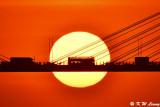 Sunset @ Ting Kau Bridge DSC_5699