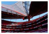 Lisboa Meu Amor - Benfica 15