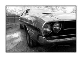 Dodge Challenger 1971, Dordives