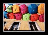 Umbrella street 2