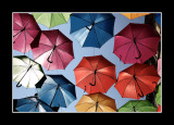 Umbrella street 3