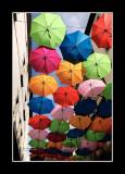 Umbrella street 4