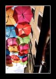 Umbrella street 6