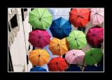 Umbrella street 9