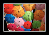 Umbrella street 13
