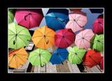 Umbrella street 14