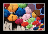 Umbrella street 19