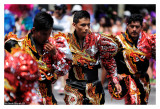 Carnaval Tropical 8