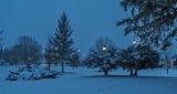 Late Winter Snow At Dawn P1190032-4