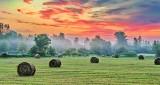 Bales In Sunrise P1220817-9