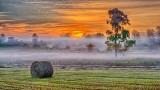 Sunrise Ground Fog P1220643-9