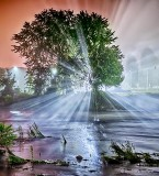 Night Fog Along The Rideau P1230083-9