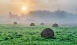 Bales & Fog At Sunrise P1240043-9