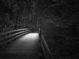 Sharon Woods Bridge 2245BW