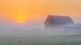 Barn In Sunrise Fog P1250885-7