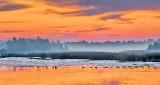 Irish Creek At Sunrise P1250900-2
