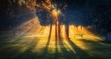 Sunrise Sunrays P1260275-91