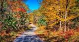 Autumn Cross Road DSCN16797-9