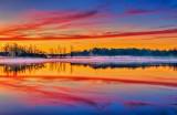 Irish Creek At Sunrise P1260693-5